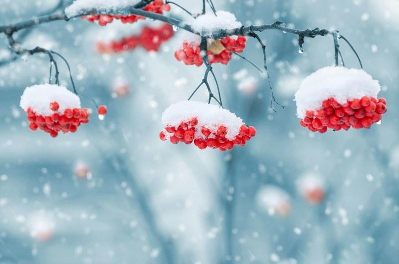 Z okazji ferii zimowych
